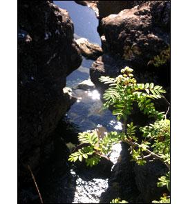 Faerie Pools Skye