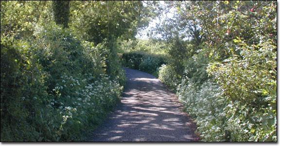 Bulwark Lane