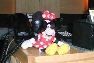 Minnie In Hollywood